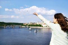 Karlov bridge stock photography