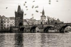 Karlov de Praga del puente de Charles la mayoría del río Moldava Fotografía de archivo