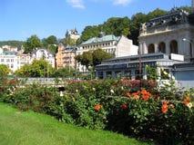 Karlovy unterschieden sich Ansicht, Czechia Stockfotografie
