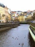 Karlovy varía la opinión del río Imagen de archivo