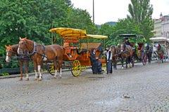 Karlovy variërt, Tsjechische Republiek Paardvoertuigen voor het drijven van toeristen Royalty-vrije Stock Afbeeldingen