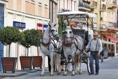 Karlovy varieert, Tsjechische Republiek - de Stad onderzoekt met Paardvervoer Stock Fotografie