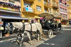 Karlovy varient Image stock