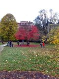 Karlovy Vary, Czech Republic - October 15, 2017, in the autumn park, children and parents play Stock Image