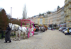Karlovy Vary horse carriages tourist attraction Stock Photos