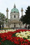 Karlskirche和花 免版税库存图片