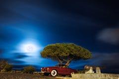 Karmann-Ghia Royaltyfri Bild