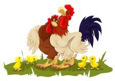 Karmazynka i kogut z kurczakami Zdjęcie Royalty Free