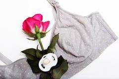 Karmiący stanik dla matek i anatomically kształtny płaski pacyfikator dla nowonarodzonego Rosebud menchie barwi w języku obrazy royalty free