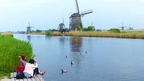 Karmić kaczki przy Kinderdijk Obrazy Royalty Free