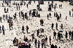 karmi kwadratowych turystów marco San Zdjęcie Royalty Free
