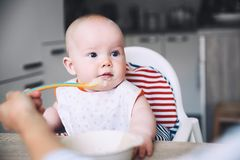 karmienia Dziecka ` s pierwszy stały jedzenie Obrazy Stock
