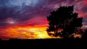 Karmosinröd solnedgång arkivbilder