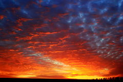 Karmosinröd solnedgång Arkivfoton