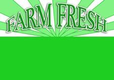 karmowa świeża zielona etykietka Obrazy Royalty Free