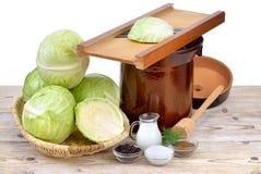 Karmowa fermentacja Fotografia Royalty Free