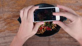 Karmowa fotografia sma??ca ryba z lemongrass i chili w Tajlandia dla og?lnospo?ecznych ?rodk?w Tradycyjny autentyczny Tajlandzki  zbiory