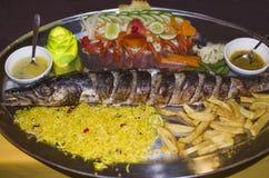 Karmowa Indiańska kuchni ryba Obrazy Stock