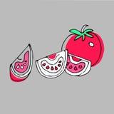 Karmowa pomidorowa jarska czerwona jarzynowa wektorowa świeżość royalty ilustracja
