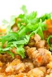 karmowego północnego wieprzowiny delicje tajlandzki pomidor Fotografia Stock