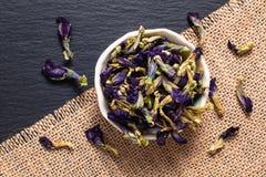 Karmowego pojęcia Motyliego grochu suchy kwiat dla robi herbaty w cera obrazy stock