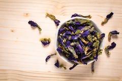 Karmowego pojęcia Motyliego grochu suchy kwiat dla robi herbaty w cera zdjęcie royalty free