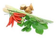karmowego składnika kung tajlandzki Tom yum Zdjęcie Stock