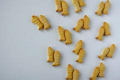 Karmowego wzoru słone przekąski na białym tle zdjęcia stock
