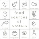 Karmowi źródła proteina royalty ilustracja