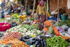 Karmowi handlowa sprzedawania warzywa w ulicznym rynku (Wodny pałac) Jaipur, Rajasthan, India obrazy stock