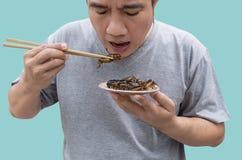 Karmowi insekty: M??czyzny ?asowania krykieta insekt na chopsticks Krykiet sma?yli crispy dla jedz? jako karmowa przek?ska, ja s? obrazy royalty free