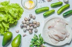 Karmowi składniki na bielu Zdjęcie Stock