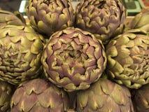 karmowi zdrowi warzywa zdjęcia royalty free