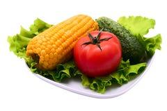 karmowi zdrowie obrazy stock