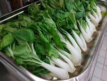 karmowy świeży japoński sałatkowy warzywo obrazy royalty free