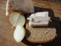 Karmowy gruby chleb i cebule Obraz Royalty Free