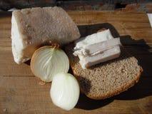 Karmowy gruby chleb i cebule Obraz Stock