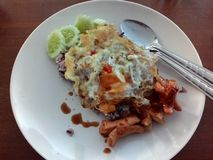 Karmowy jajko Fotografia Stock