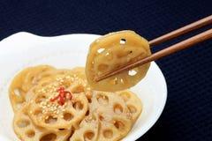 karmowy japończyk Zdjęcie Royalty Free
