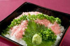 karmowy japończyk Fotografia Royalty Free