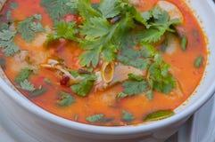 karmowy krewetkowy zupny tajlandzki Obraz Stock