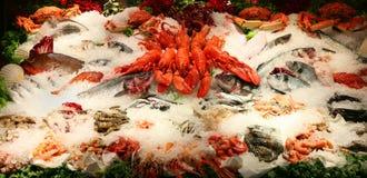 karmowy morze Obraz Stock