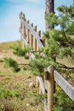 Karmowy palika ogrodzenie Zdjęcie Stock