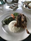 Karmowy Restauracyjny Ryżowy kaczka talerz Zdjęcia Royalty Free