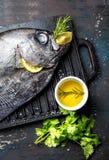 Karmowy tło z surowym świeżej ryba reineta, ziele, olil i cytryną, Odgórny widok Fotografia Royalty Free