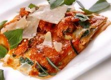 karmowy włoski lasagna obraz stock