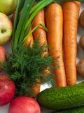 karmowy warzywo Zdjęcia Royalty Free
