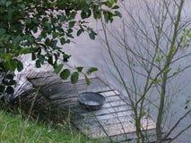 Karmowy wiadro na jeziorze zdjęcia stock