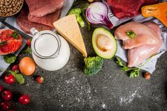 karmowy zdrowy organicznie Zdjęcia Stock