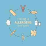 Karmowych allergens kreskowe ikony Grupa osiem ważnych allergenic foods często nawiązywać do Big-8 jako Zdjęcie Royalty Free